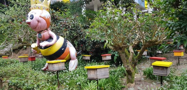 180718n 145 Bee Farm_resize