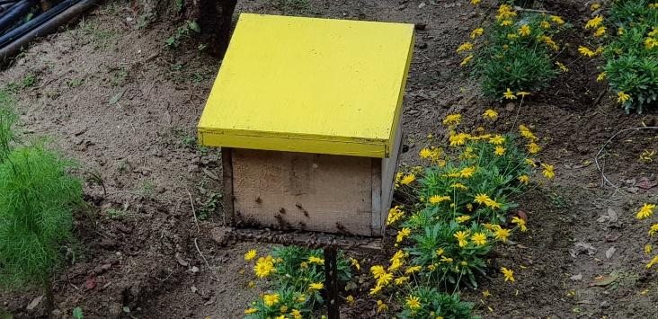 180718n 142 Bee Farm_resize